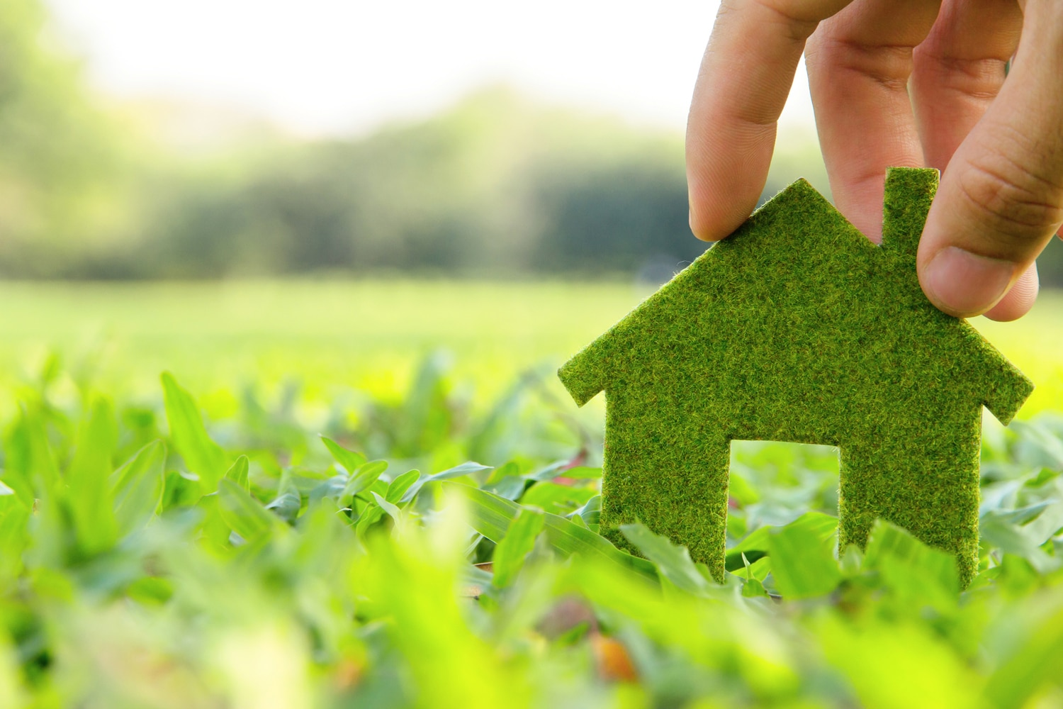 the long term benefits of eco friendly buildings The effect of indoor environmental quality (ieq) in office buildings on employee health, well-being, and productivity is an important topic in occupational health and public health research and practice.